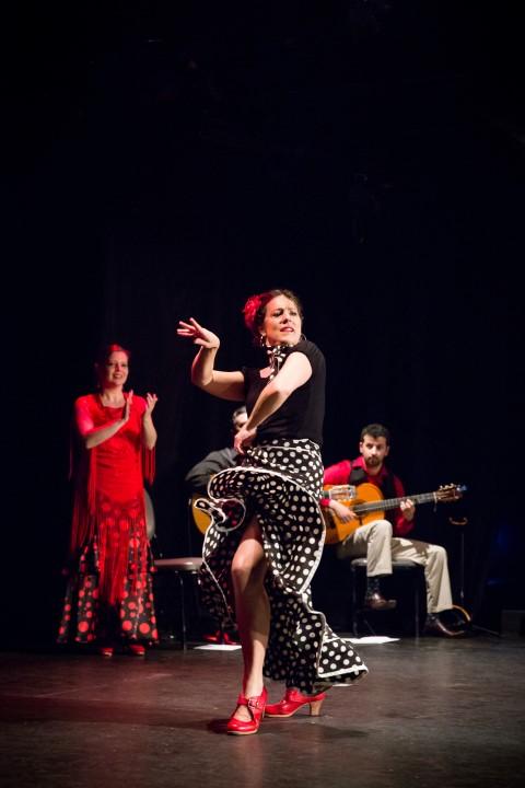 karine parise flamenco (75)