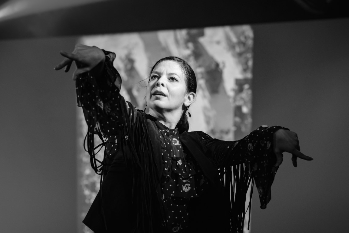 flamenco karine parise